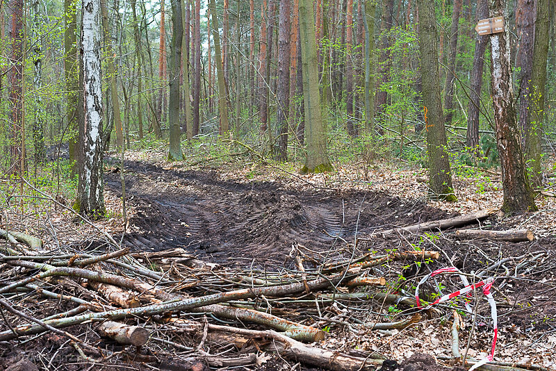Doelauer-Heide-1-4.JPG
