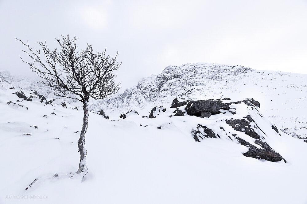 Blog-Winterreise-6.JPG