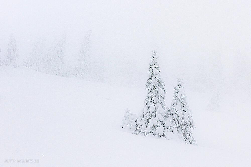 HP-Riesengebirge-4.JPG